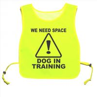 We Need Space Dog In Training Yellow tabard Dog Walking Training 03