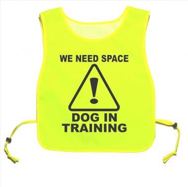 We Need Space Dog In Training Yellow tabard Dog Walking Training 03