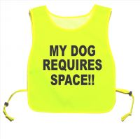 My Dog Requires Space!! Yellow tabard Walking Training 05