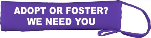 Adopt Or Foster? We Need You...  Lead Cover / Slip